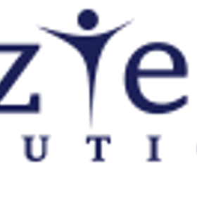 BizTech Solutions Inc logo