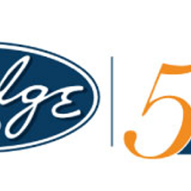 Judge Group, Inc. logo